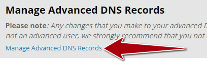 NIC_Manage_Advanced_DNS.png